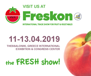 Visit Symphonia Team at FRESKON